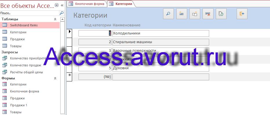 Готовая база данных Access «Магазин бытовой техники». Форма Категории