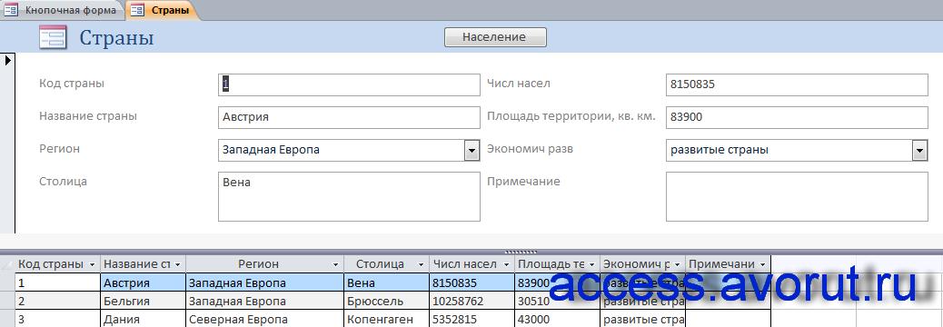 """Форма «Страны» в курсовой по базам данных """"Геграфия""""."""