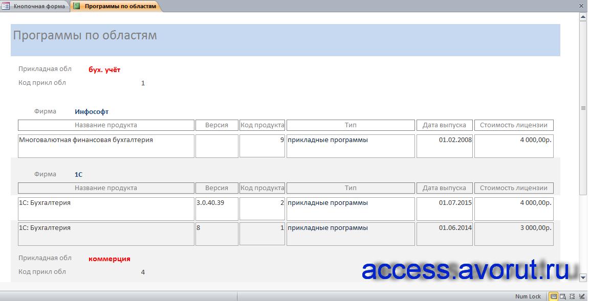 """Отчёт «Программы по областям» в готовой базе данных """"Программные продукты""""."""